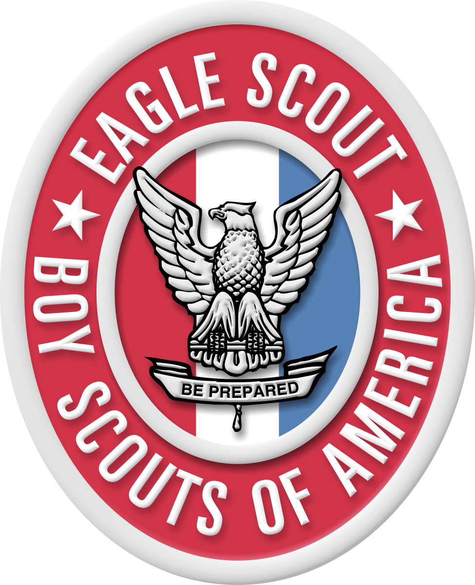 20080824173243_Eagle badge